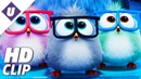The Angry Birds Movie 2 2019 Take Your Hatchlings to Work Day Official Clip