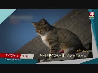 Чирвоная Слобода, Белыничский район, анонс.