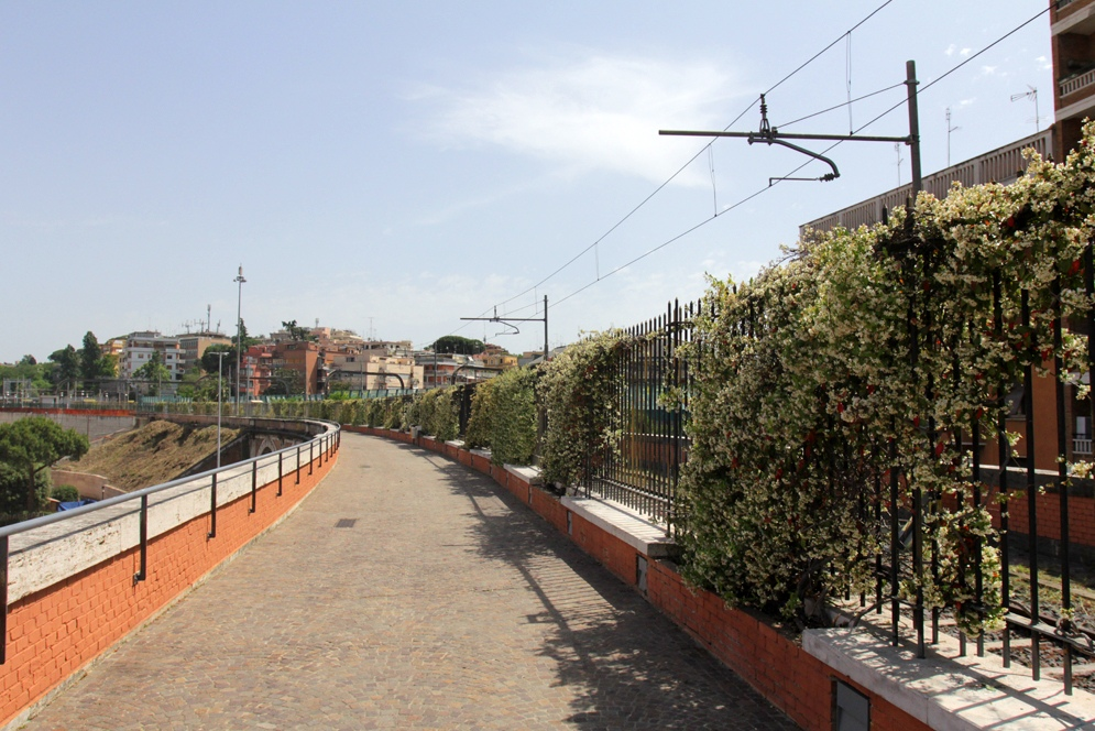 Железная дорога к Папе Римскому