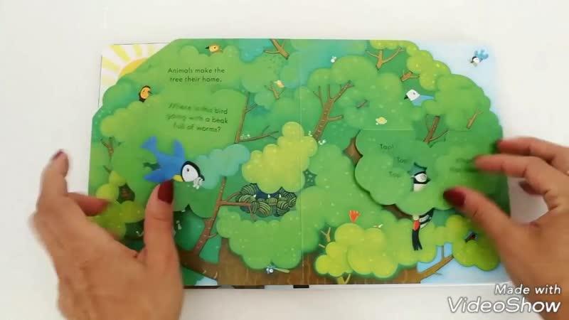 Peep inside a tree - Usborne.mp4