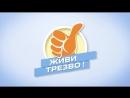 Факты о Трезвости №11 Трезвые праздники новая традиция Реклама
