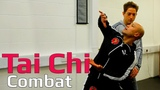 Tai chi combat tai chi chuan - How to use a spin elbow attack in tai chi. Q20