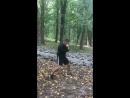 Бой с тенью и пробежка по лесу 🌿🌳👊🥊