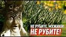 Мэр-дровосек против Воронцовского парка