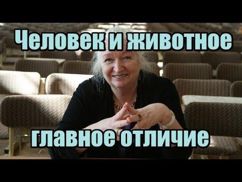 Черниговская Т.В. - Человек и животное: главное отличие
