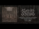 FIXATION ON SUFFERING - CORRIDORS OF LACERATED CONFINEMENT [SINGLE] (2018) SW EXCLUSIVE