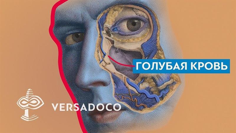 Versadoco Голубая кровь Почему древние изображали синих богов