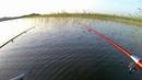 Озеро Отрадное Приозерск. Рыбалка