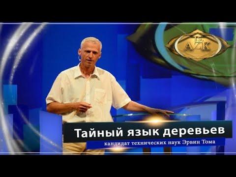 Доклад Эрвина Тома «Тайный язык деревьев» | www.kla.tv
