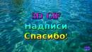 Надписи Спасибо 3D GIF