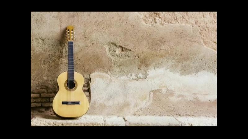 Урок 1 - История появления гитары. Разновидности гитар. Выбор первого инструмента