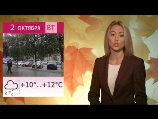 Погода предстоящей недели: что ждать в Липецке?