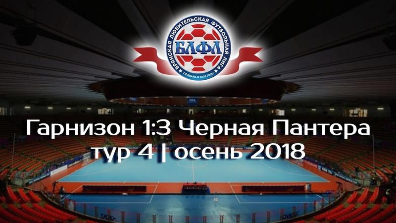 Гарнизон 1-3 Черная Пантера   осень   тур 4   2018