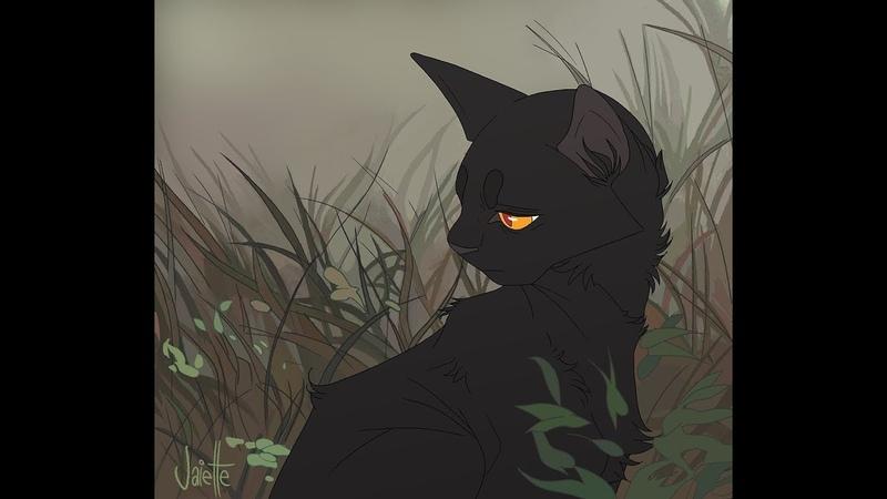 Сумеречница и Грач Ты думал что я слабая Коты Воители Клип