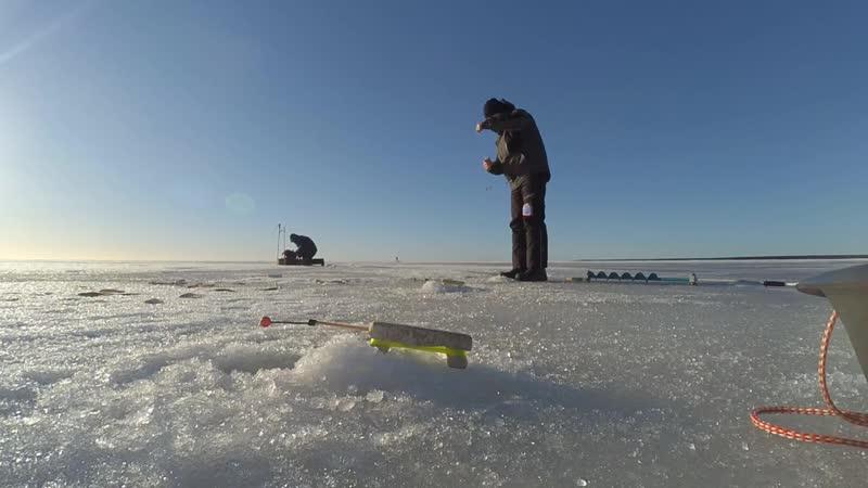 Рыбалка на корюшку Финский Залив 17.02.19