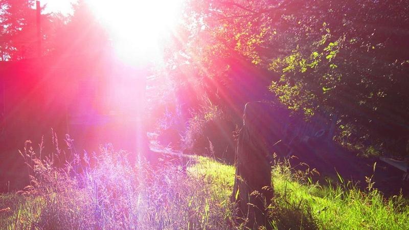 ТетаХилинг ThetaHealing® медитация манифестация Вианны Стайбл