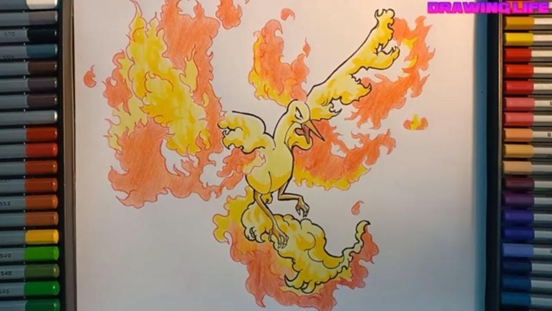 Cách vẽ pokemon huyền thoại chim lửa Moltres-bảo bối thần kỳ