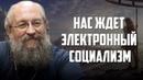 Анатолий Вассерман. Нас ждет электронный социализм