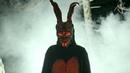 Contra Anıl Piyancı - Tavşan