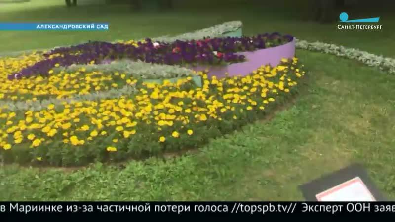 Цветы в Александровском саду