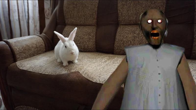 Бабуся GRANNY напугала кролика Лялю • Nepeta