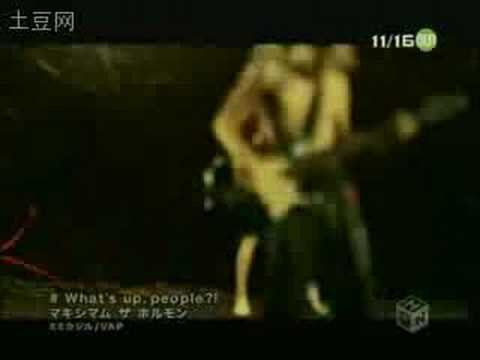 Maximum the hormone what's up people