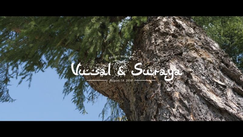 Вусал и Сурая