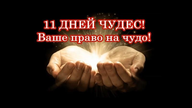 Вы имеете право на чудо! Для Вас доступно 11 дней чудес!