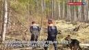 Грибника нашли мертвым в лесу в районе Алабушево