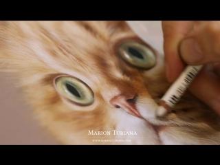 Sushi - Pastel by Marion Tubiana