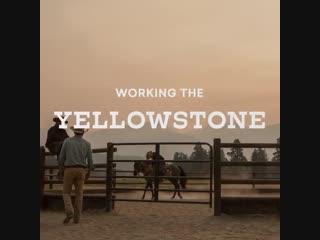 Yellowstone Oscar nominated wardrobe designer  explains the unique Yellowstone aesthetic.