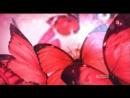Белгородская реклама на Пятом канале в первом мультиплексе