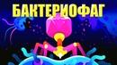 Самое смертоносное существо на планете Земля Бактериофаг