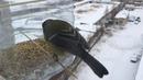 В зимние холода не забудьте покормить птиц