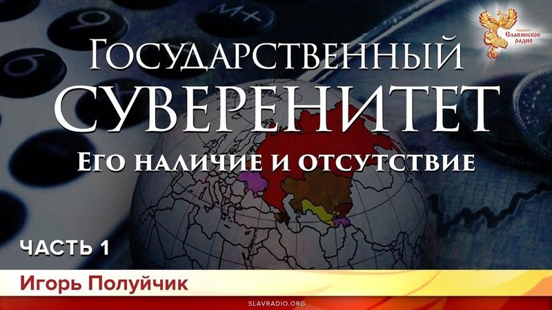 Государственный суверенитет. Его наличие и отсутствие. Игорь Полуйчик. Часть 1