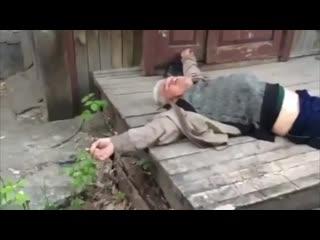 Васюня, ты спишь, мой красавчик?