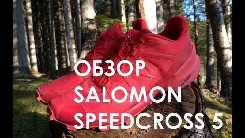 Правда о Salomon Speedcross 5. Обзор и тесты кроссовок для трейлраннинга