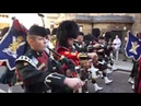 2-SCOTS Royal Highland Fusiliers - Glasgow Homecoming Parades 2013/2018