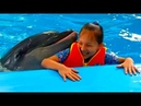 День рождения с дельфинами Дельфины поздравляют Алину Вальс роза и поцелуй от дельфинчиков