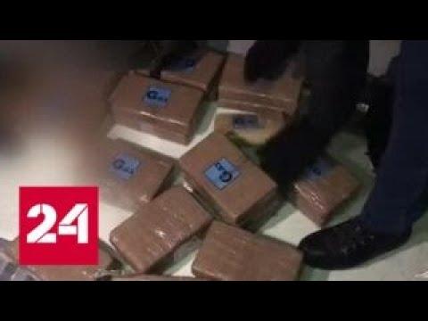 В Петербурге полиция обнаружила 50 килограммов кокаина в рефрижераторе с бананами - Россия 24