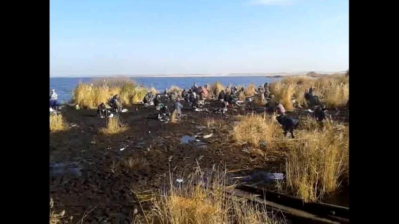 Video-2012-10-12-12-38-34.mp4