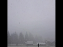 Снег в Буковели