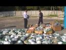 В Брянске полицейские изъяли 45 километров рыболовных сетей
