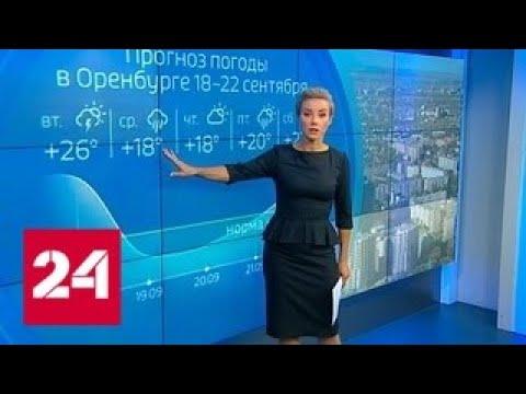 Погода 24: сезон пожаров в Оренбуржье не завершен - Россия 24