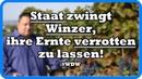 Wahnsinn Staat zwingt Winzer ihre Ernte verrotten zu lassen ~WDW~