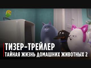The Secret Life Of Pets 2 | The Gidget Trailer