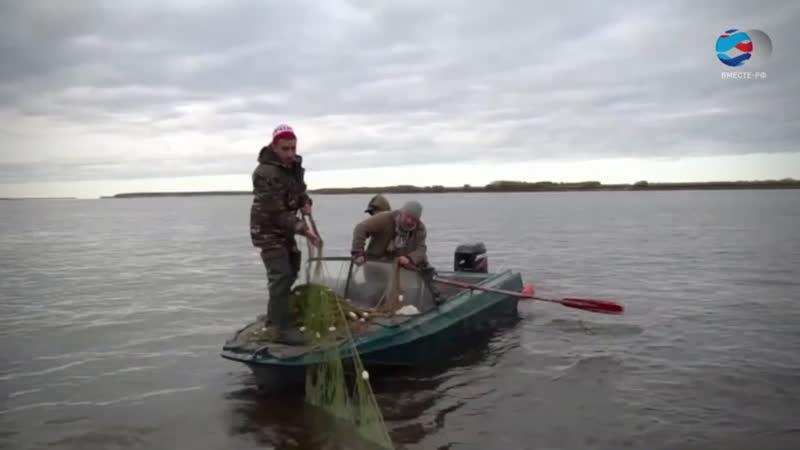 Лодки, конфискованные у браконьеров, станет проще продать
