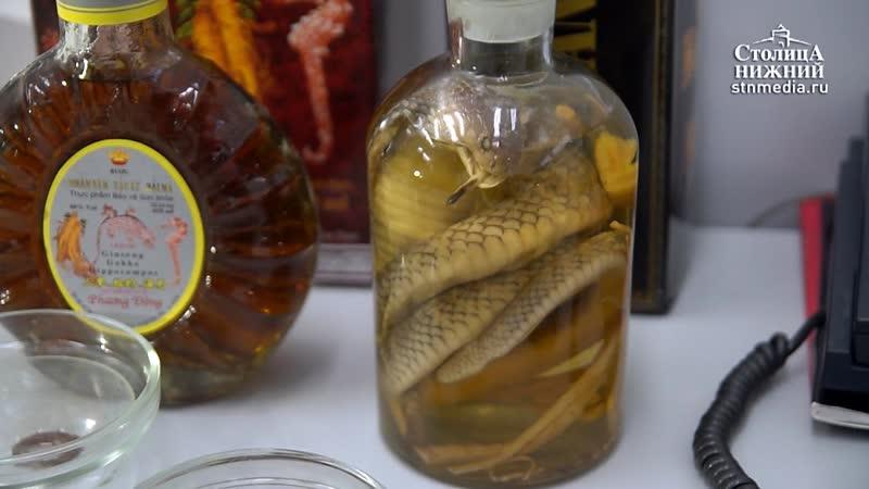 В нижегородском аэропорту Стригино у туриста изъяли бутылку с коброй внутри