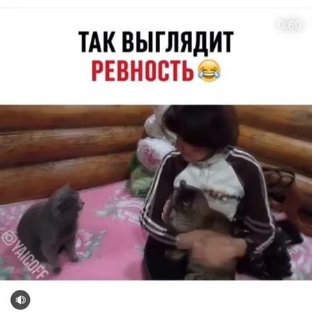 Elya__april video