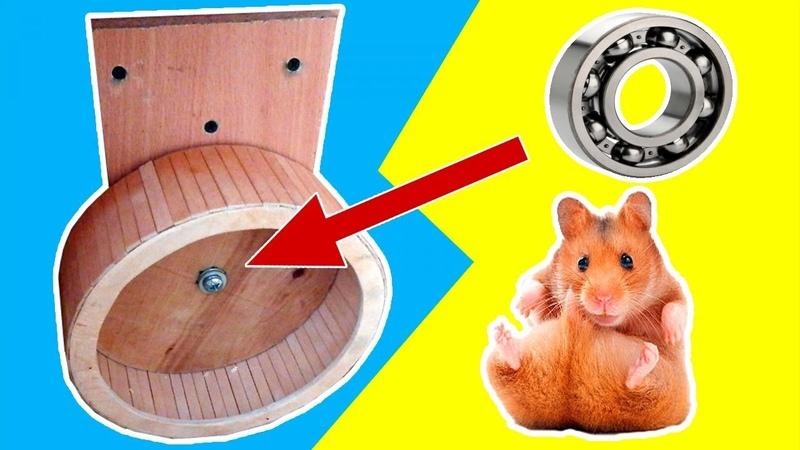 Колесо для хомяка. Как сделать колесо для хомяка своими руками